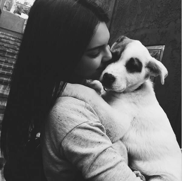 Kendall Jenner s'est fait un nouveau copain, un chien !