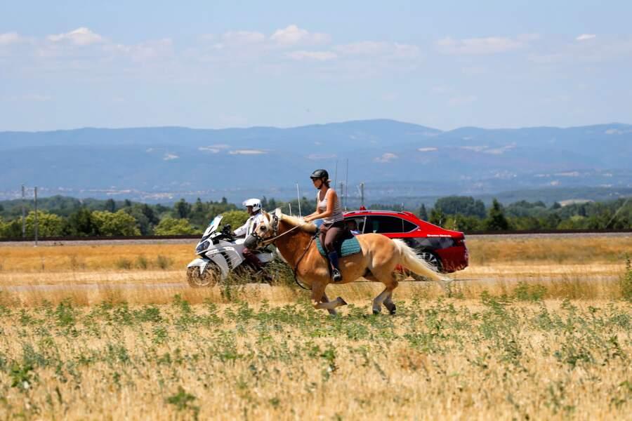 A cheval, en moto ou en voiture, tous les moyens sont bons pour suivre le Tour