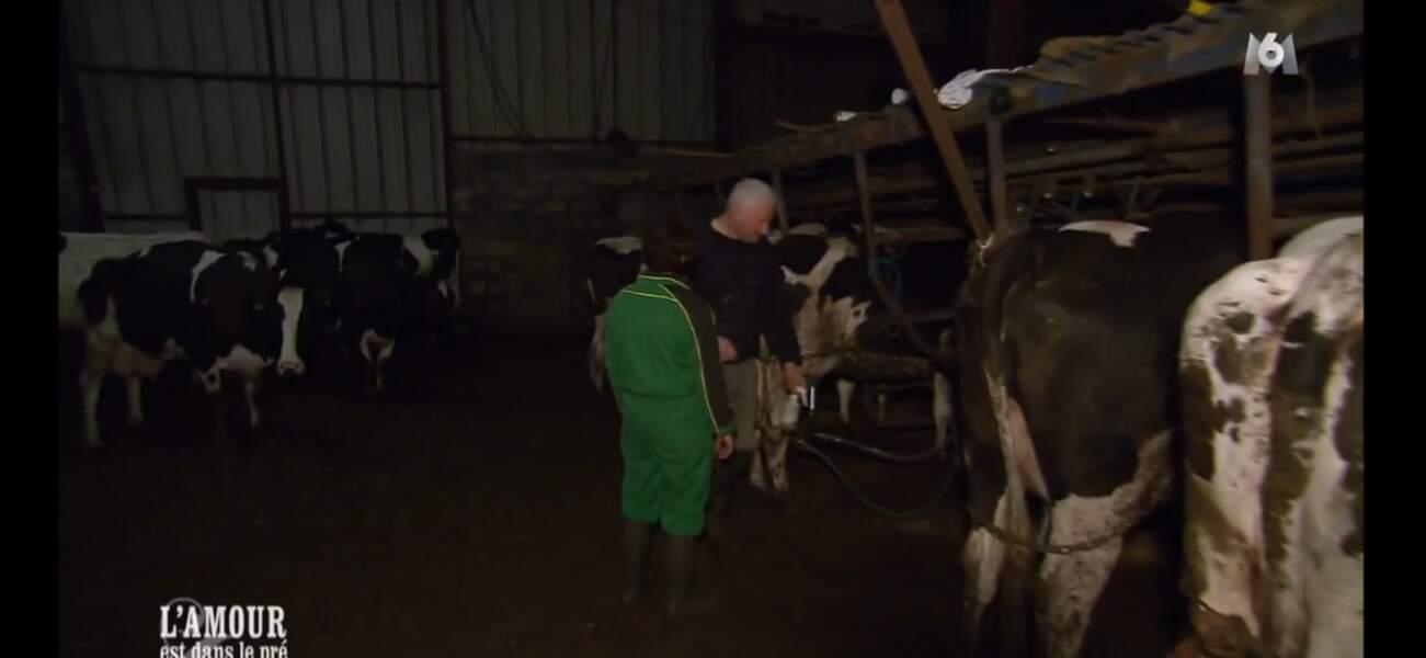 Petite entrevue (glamour) entre Véronique et Bernard auprès des vaches