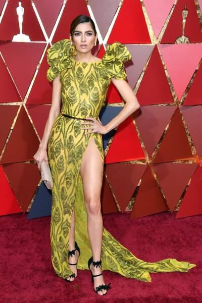 """""""Actrice"""" américaine, elle était dimanche soir sur le tapis rouge des 89e Oscars"""