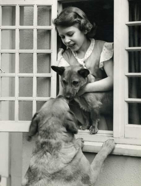 C'est le prince Albert qui le premier a offert à sa fille chérie un corgi quand alle avait 7 ans. Sa passion depuis