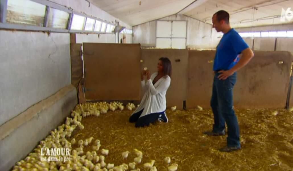 Guillaume propose un nouveau job à Karine : compteuse de poussins.