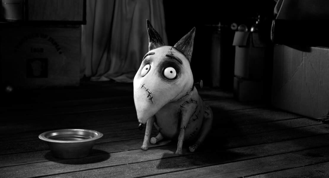 FRANKENWEENIE (2012) : le premier chien zombie du cinéma d'animation