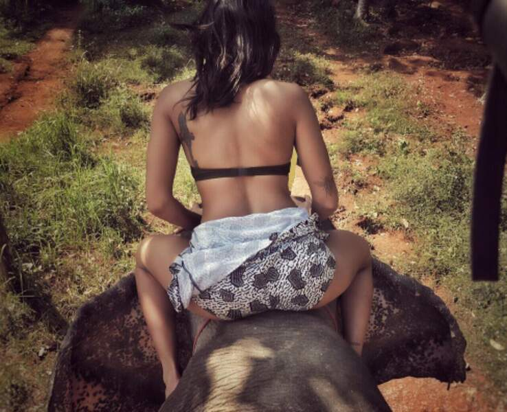 Sensation à dos d'éléphant en Thaïlande...