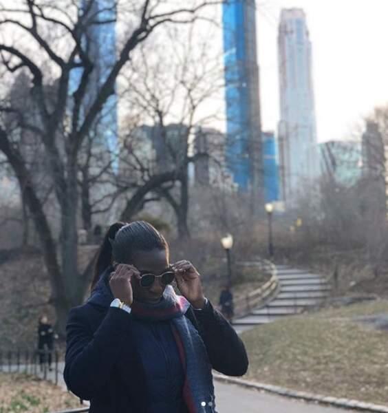Promenade dans Central Park