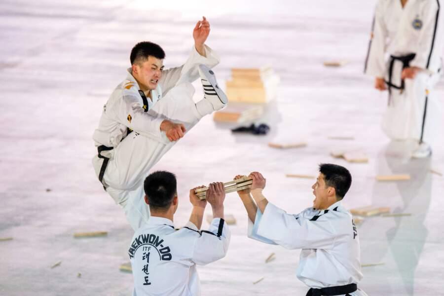 ... et démonstration de taekwondo, sport national...