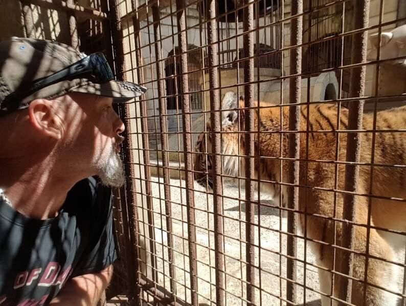 Vincent Lagaf' fait connaissance avec les tigres de Felindra le temps d'un tête à tête