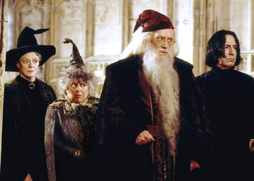 Albus Dumbledore est le directeur de l'école de sorcellerie Poudlard.