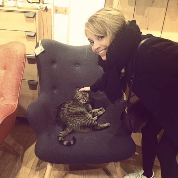 Hop un petit chat au chaud dans son fauteuil