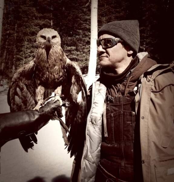 Face à Oeil-de-Faucon, cet aigle ne se rend pas compte de sa chance