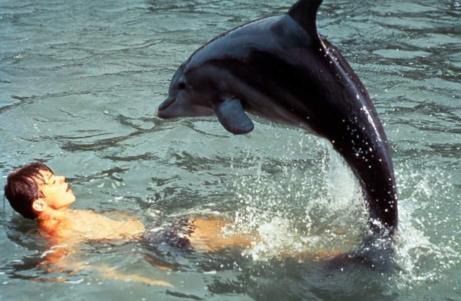 Flipper le dauphin, dans la série Flipper de 1964