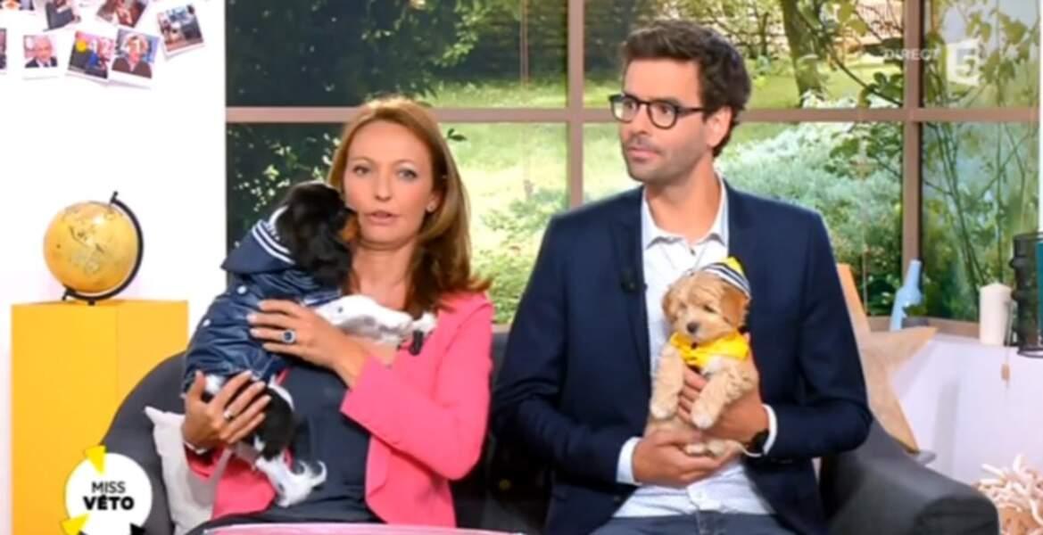 Et de celui de ces deux petits chiens ? (Oui, c'était l'occasion de caser une photo mignonne)