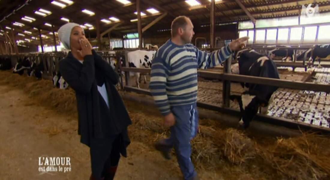 """""""Elle est grande cette vache !"""", lance Karine sûre d'elle. """"C'est un taureau"""", répond l'éleveur. C'est pas gagné..."""