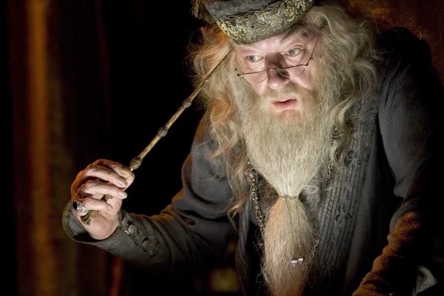 Harry Potter et la Coupe de feu en 2005