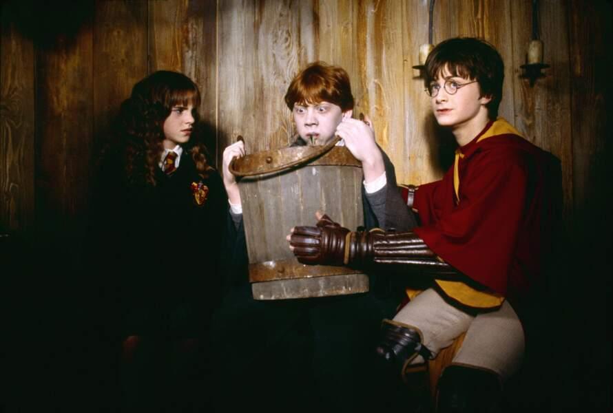 Dans ce second volet de la saga, les trois amis vont devoir affronter la redoutable chambre des secrets