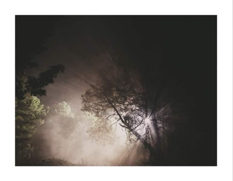 Artiste à ses heures perdues ? En tout cas, Steven Yeun nous offre ici un très beau cliché