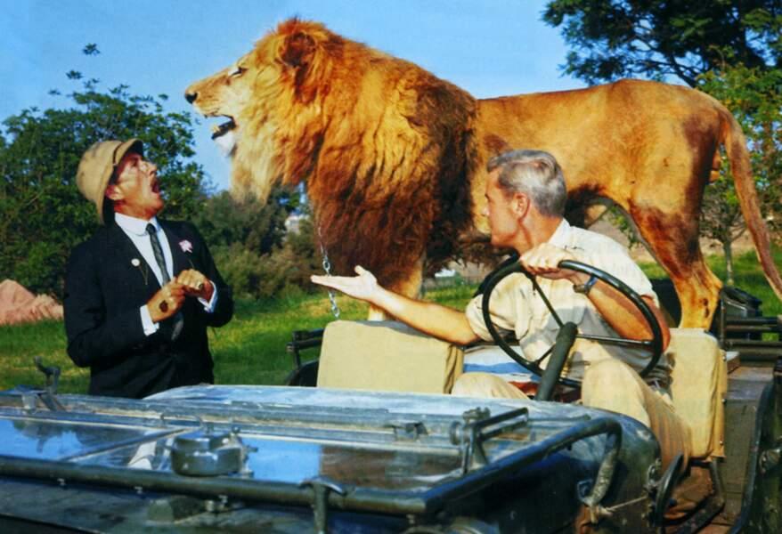 Clarence, le lion dans Daktari (1966)