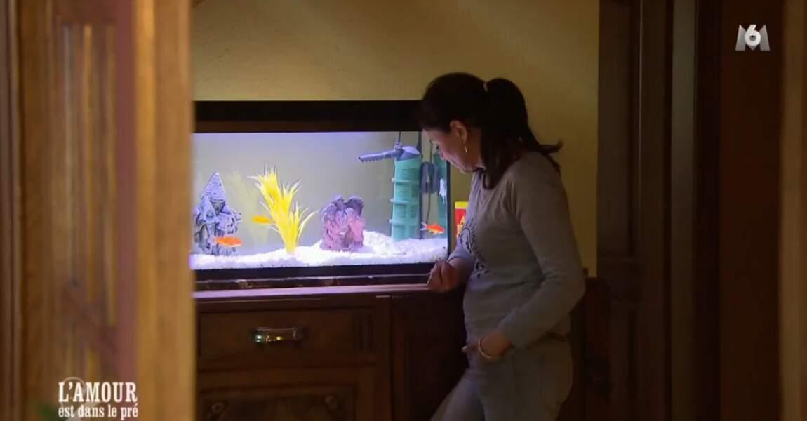 Pendant ce temps, Laetitia regarde avec fascination l'aquarium