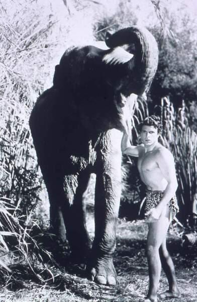 Pour Tarzan, l'éléphant est un allié de force !