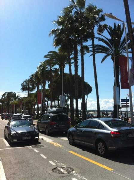 En plus, aujourd'hui, il fait beau à Cannes, ça change !