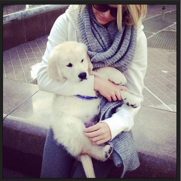 C'est LA star d'Instagram cette semaine. Non, il ne s'agit pas de Caroline Receveur mais de son chien Island