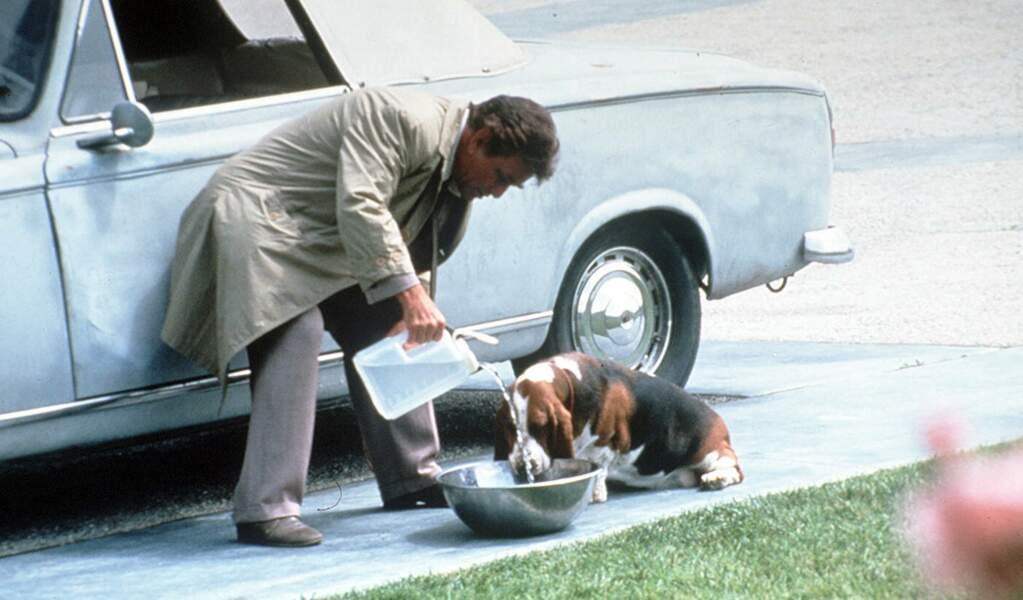 Et le célèbre chien de Colombo