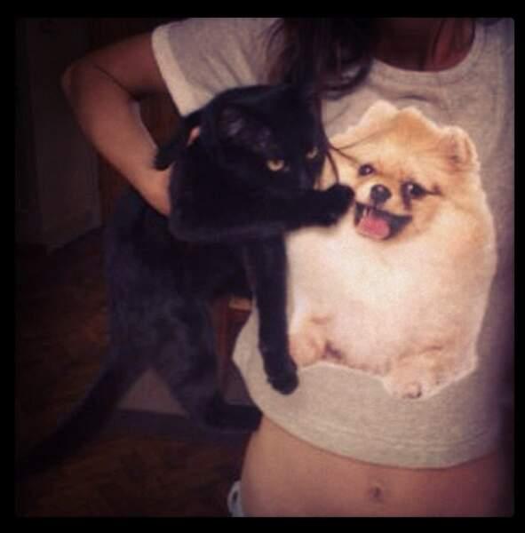 Et un chat qui n'aime pas trop le t-shirt chien visiblement !