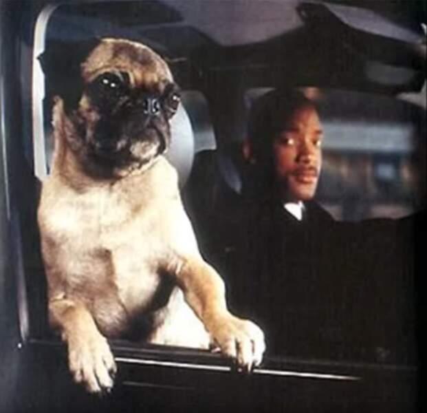MEN IN BLACK 2 (2002) : Will Smith, obligé de faire équipe avec Frank, un chien bavard un peu saoulant