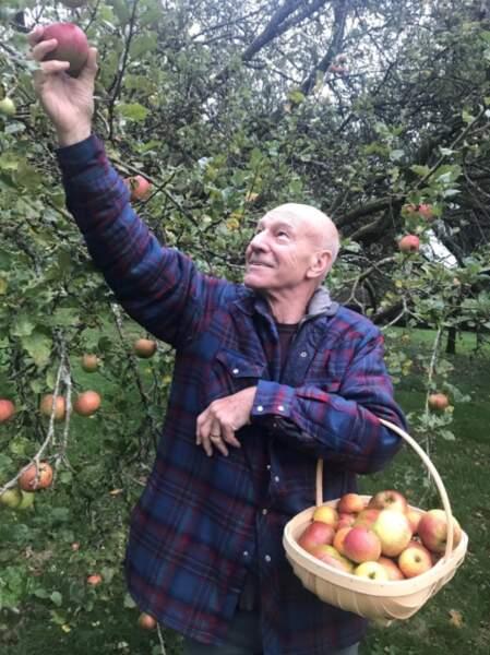 Allez, c'est pas tout ça mais on a cueillette de pommes avec Patrick Stewart.