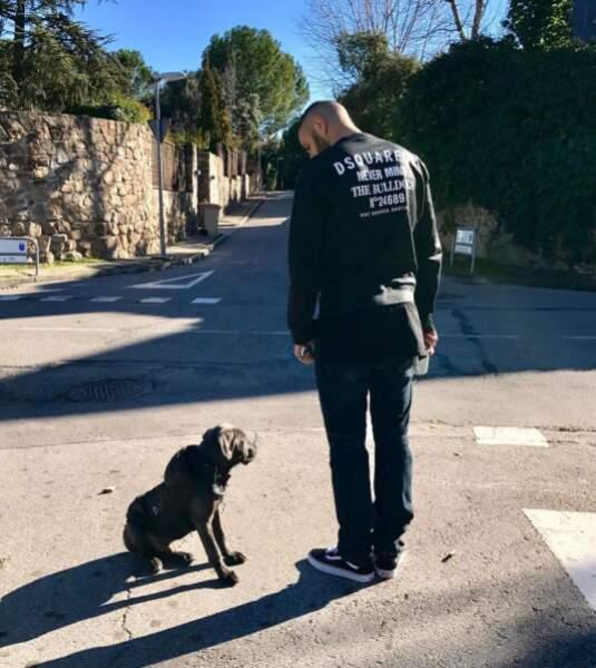Karim Benzema préfère les cane corsos.