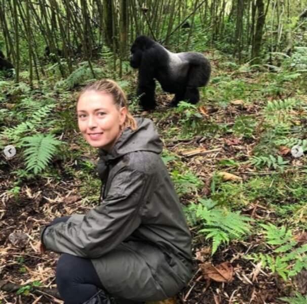 Maria Sharapova a rencontré un gorille au Rwanda et on est un peu jaloux.
