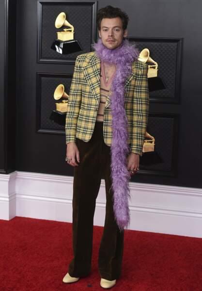 Harry Styles avait lui aussi sélectionné un truc en plumes.