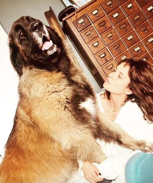 Qui prend un peu moins de place que Nessie, un des chiens de Faustine Bollaert.
