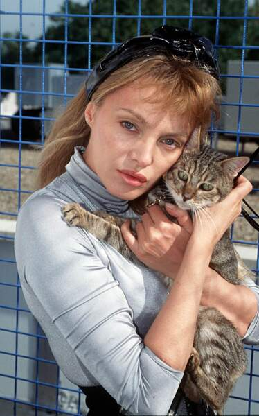 Et un petit chat à SPA, parce qu'on adore les petits chats.