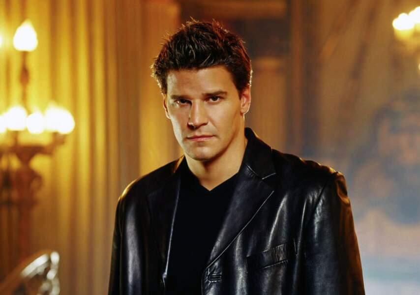 Durant 5 saisons, Angel va combattre les forces de l'ombre à Los Angeles afin d'obtenir sa rédemption
